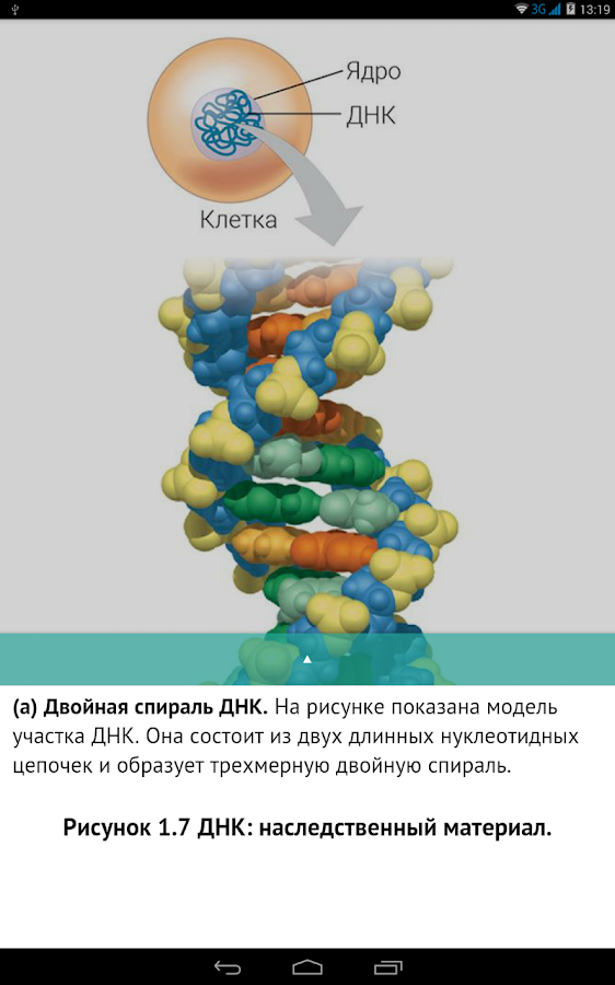KPD-BIO- screenshot
