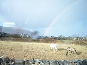 Photo: horsies & a rainbow