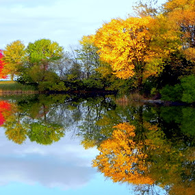Nature's Beauty by Dawn Marie - Uncategorized All Uncategorized ( milwaukee, water, clouds, wisconsin, reflection, lagoon, sky, autumn, colors, trees, leaves )