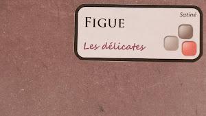 nuancier-les-betons-de-clara-figue-collection-les-delications-decoration-interieure-enduit-decoratif.jpg
