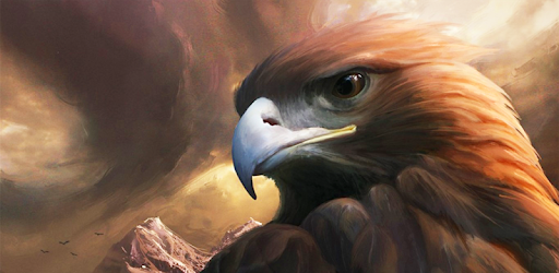 Eagle Wallpaper - Apps on Google Play