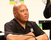 ANC national youth task team co-ordinator Sibongile Besani said the decision to disband the team lies with the ANC's national executive committee. File picture.