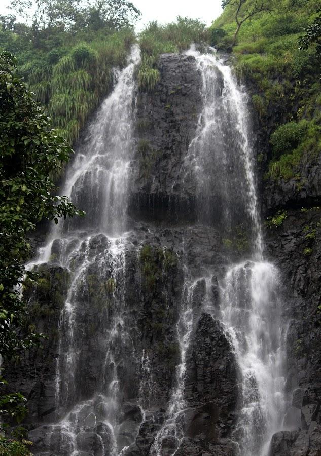 Falls by Vivek Naik - Landscapes Waterscapes