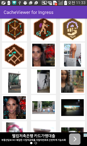 CacheViewer for Ingress イングレス