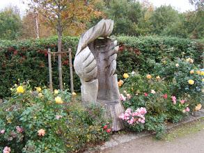 Photo: Impressionen aus dem Ostseeheilbad Zingst/ Darß ( siehe auch www.freie-ferienwohnung-zingst.de und www.binz-zingst-kuehlungsborn.de )