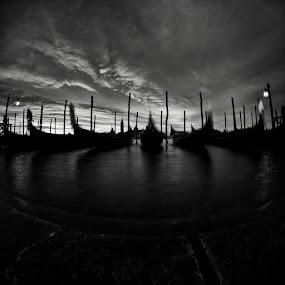 Venice by Sasa Lazic - Landscapes Waterscapes ( canon, fishyeye, bw, venice, long exposure, sunrise )