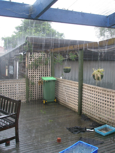 lots of heavy rain out the back door