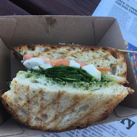 Toastie to go! by Dawn Simpson - Food & Drink Plated Food ( salad, paper, on the go, boxed lunch, prawn, toastie )
