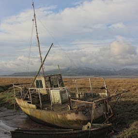 High and Dry by Carol Lauderdale - Transportation Boats ( neglected, old, beach, askam-in-furness, boats, transportation )