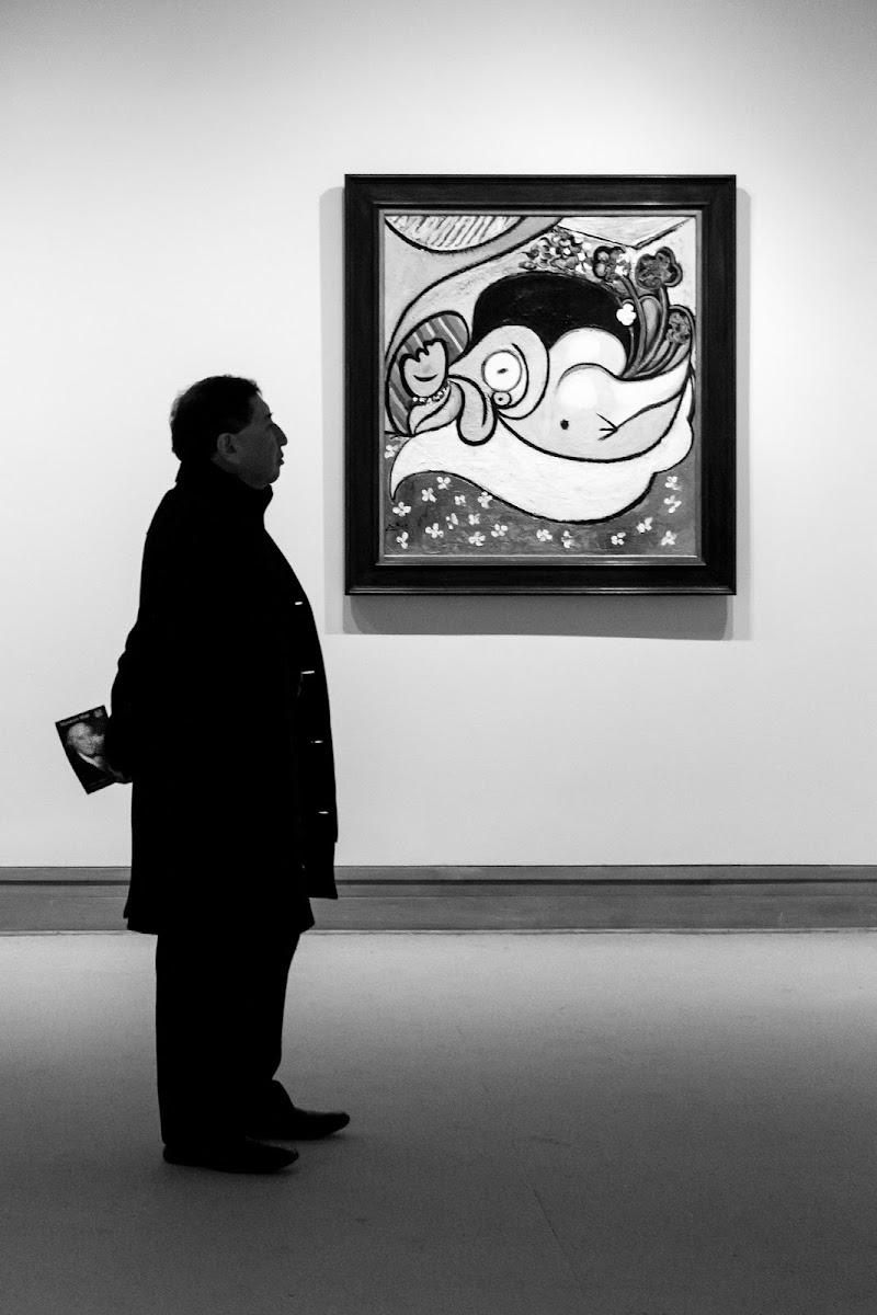 ignorando Picasso di alberto raffaeli