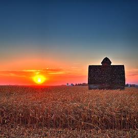 Southern winds by Chad Heggen - Landscapes Prairies, Meadows & Fields ( iowa, barn, sunset, harvest, sun, corn )