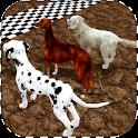 Greyhound Derby Dog Racing icon