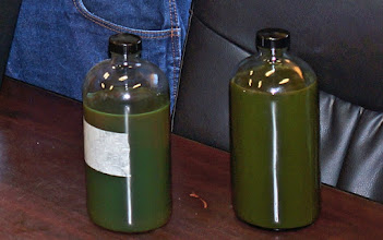 Photo: Two bottles of crude oil, from different areas of the Bakken Oil field, which is why they appear somewhat different.