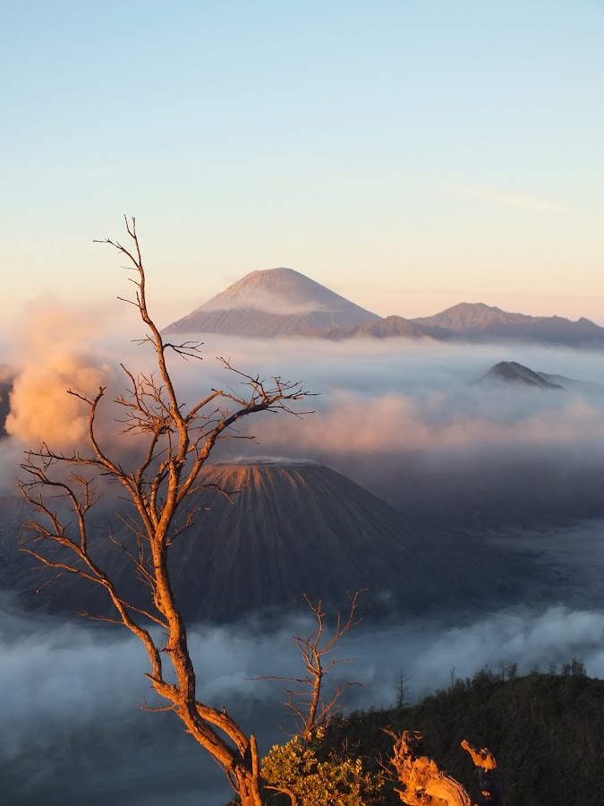 Sunrise in Bromo by Yayan Sulthon - Landscapes Mountains & Hills