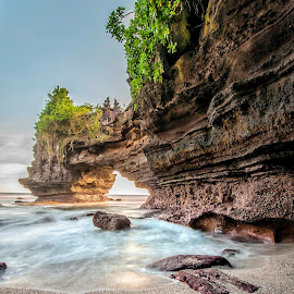 Rock by Bobo Tandiono - Landscapes Beaches ( beaches, rock, leaf )