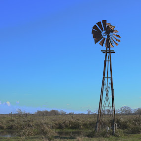 The meeting place.   by John Chitty - Landscapes Prairies, Meadows & Fields ( farm, ranch, landscape, windmills, windmill,  )