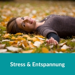 100 h Yogaübungsleiter Stress
