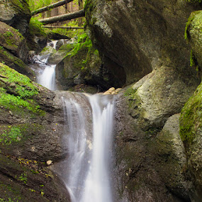 Waterfall by Ionut Stoica - Nature Up Close Water ( water, mountain, forrest, green, waterfall, long exposure, morning, landscape )