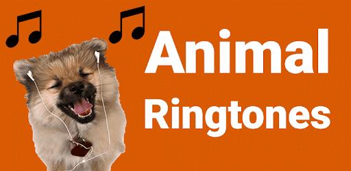 MP3 Animal Ringtones for PC
