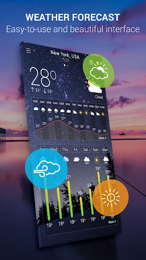 Hourly Weather Pro App per Android screenshot
