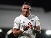Fulham promoveert en neemt een resem oude bekenden van de Pro League mee naar de Premier League