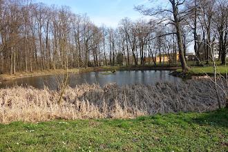 Photo: rybník u zámku ve Slezských Rudolticích