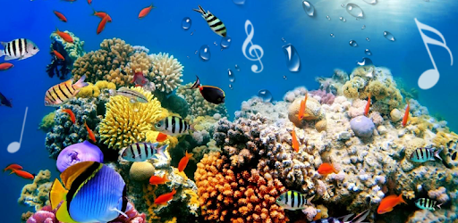 Aquarium Live Wallpapers Free APK Android PC