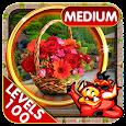 Challenge #100 Garden Escape Hidden Objects Games apk