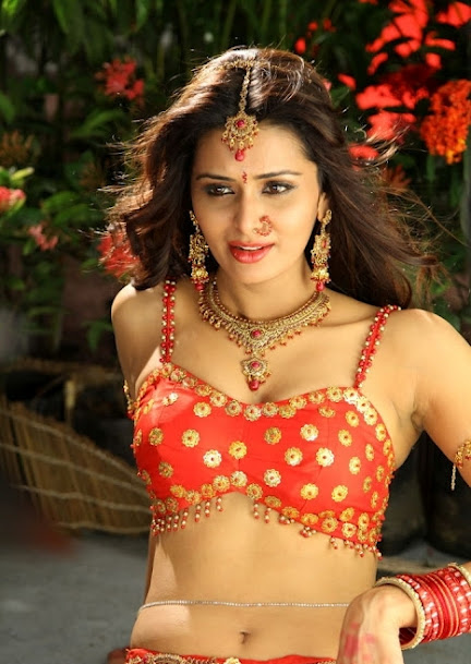 Meenakshi Dixit navel photos, Meenakshi Dixit hot photos, Meenakshi Dixit sexy photos, Meenakshi Dixit Masala photos