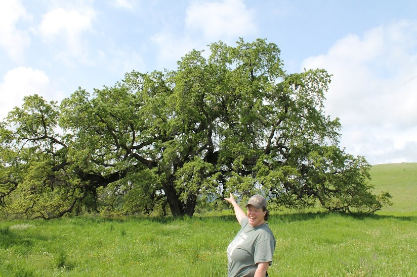This image shows JayLee Tuil pointing excitedly at a large valley oak tree.