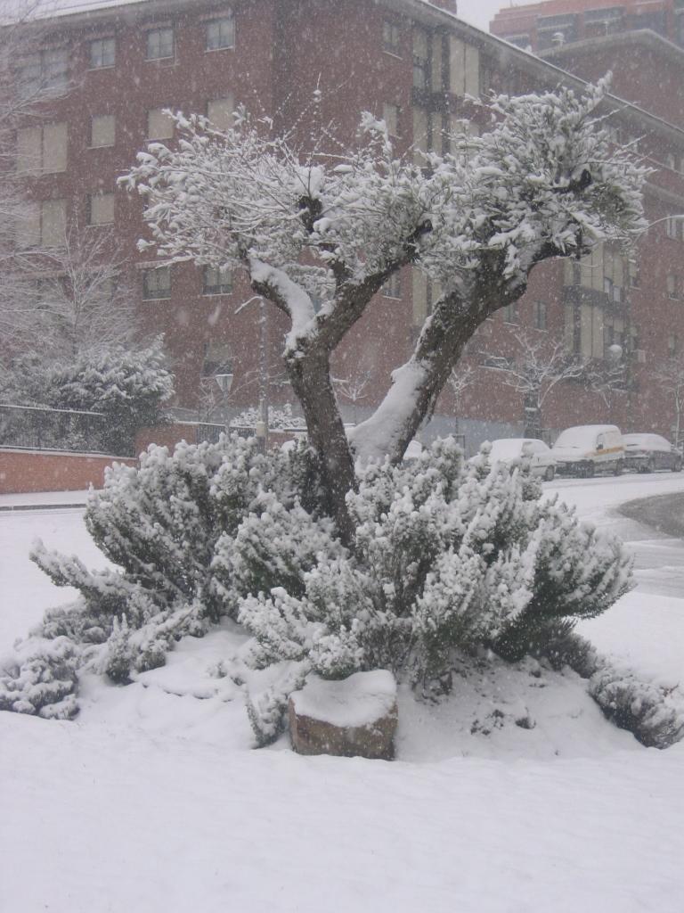 Nieva en Villaverde