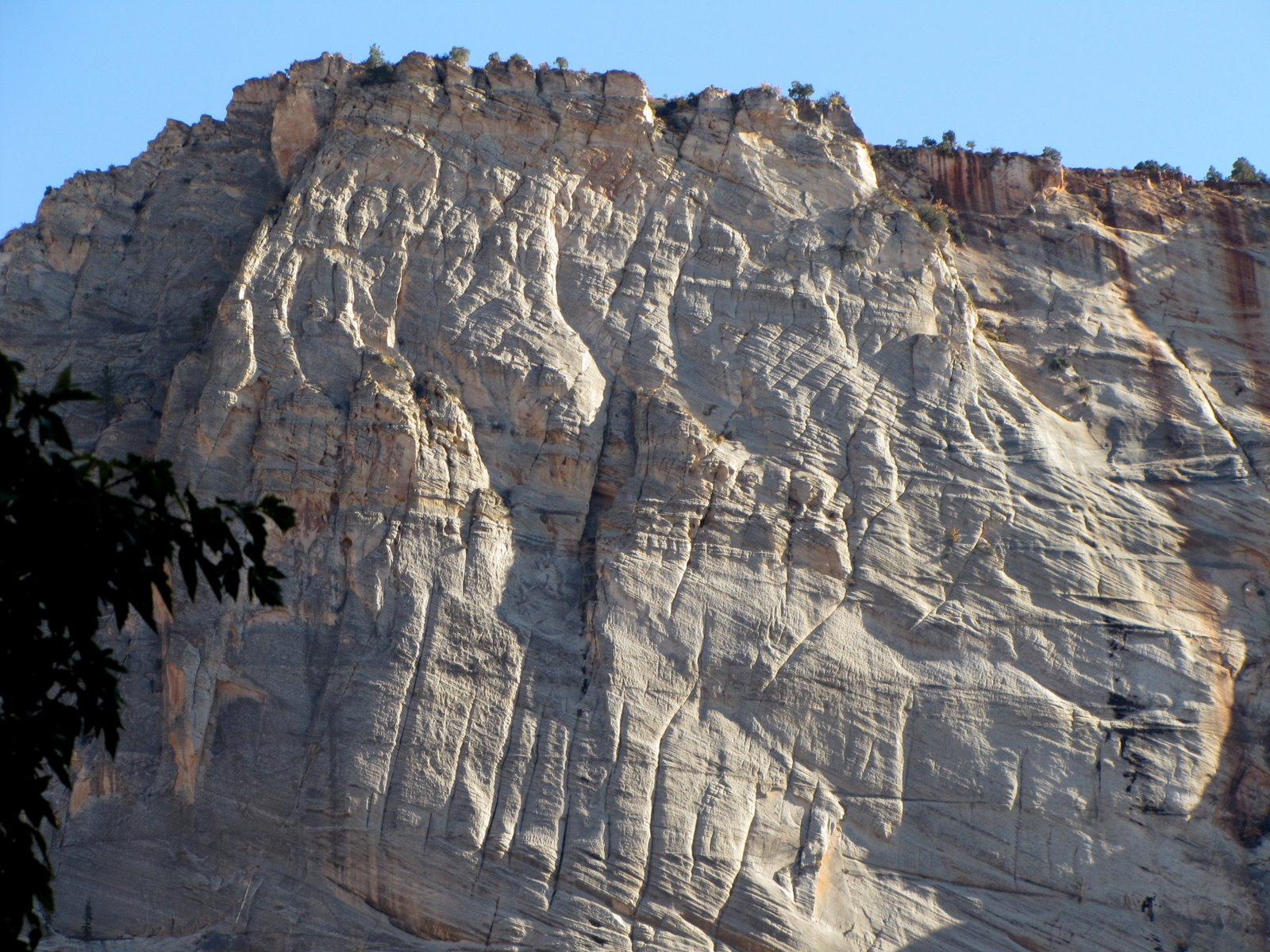 Fehér elefántbőr szikla  White elephant-skin rock