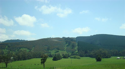 The countryside between Lakes Entrance and Phillip Island