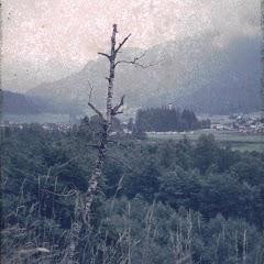 1974 Sommerlager - Sola74_128
