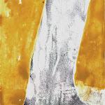 Studio4 Pino20x30 cm Disponibile Available