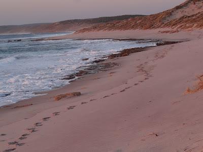 Beach to myself.......