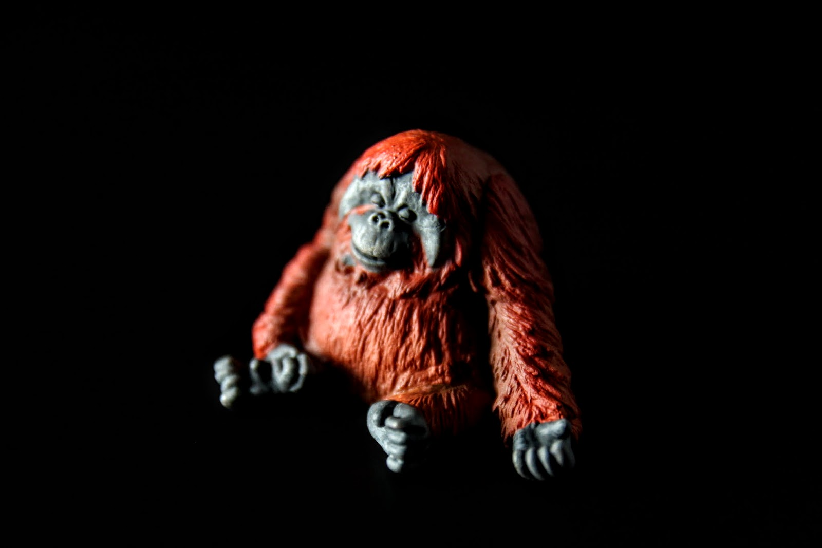 紅毛猩猩睡覺會微笑