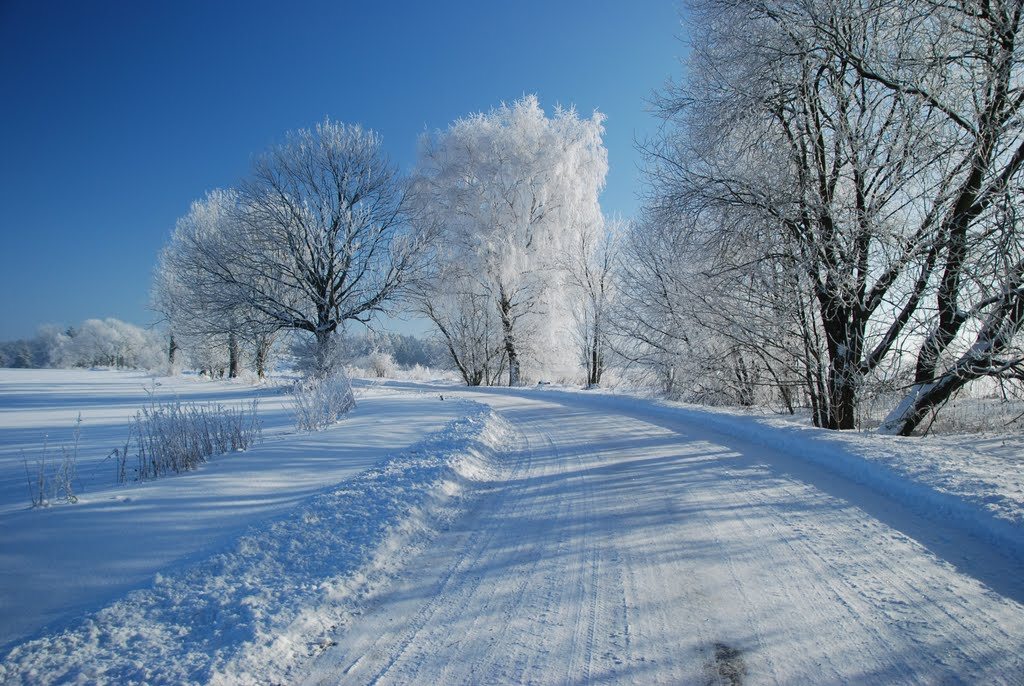 Ladovská zima 2010 - DSC_1548
