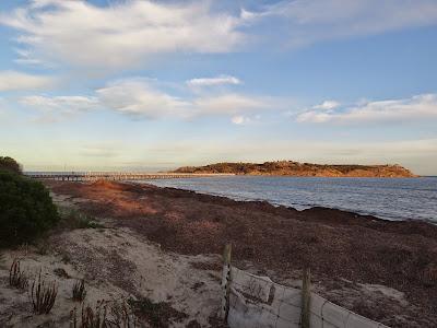 Granite Island from Victor Harbor