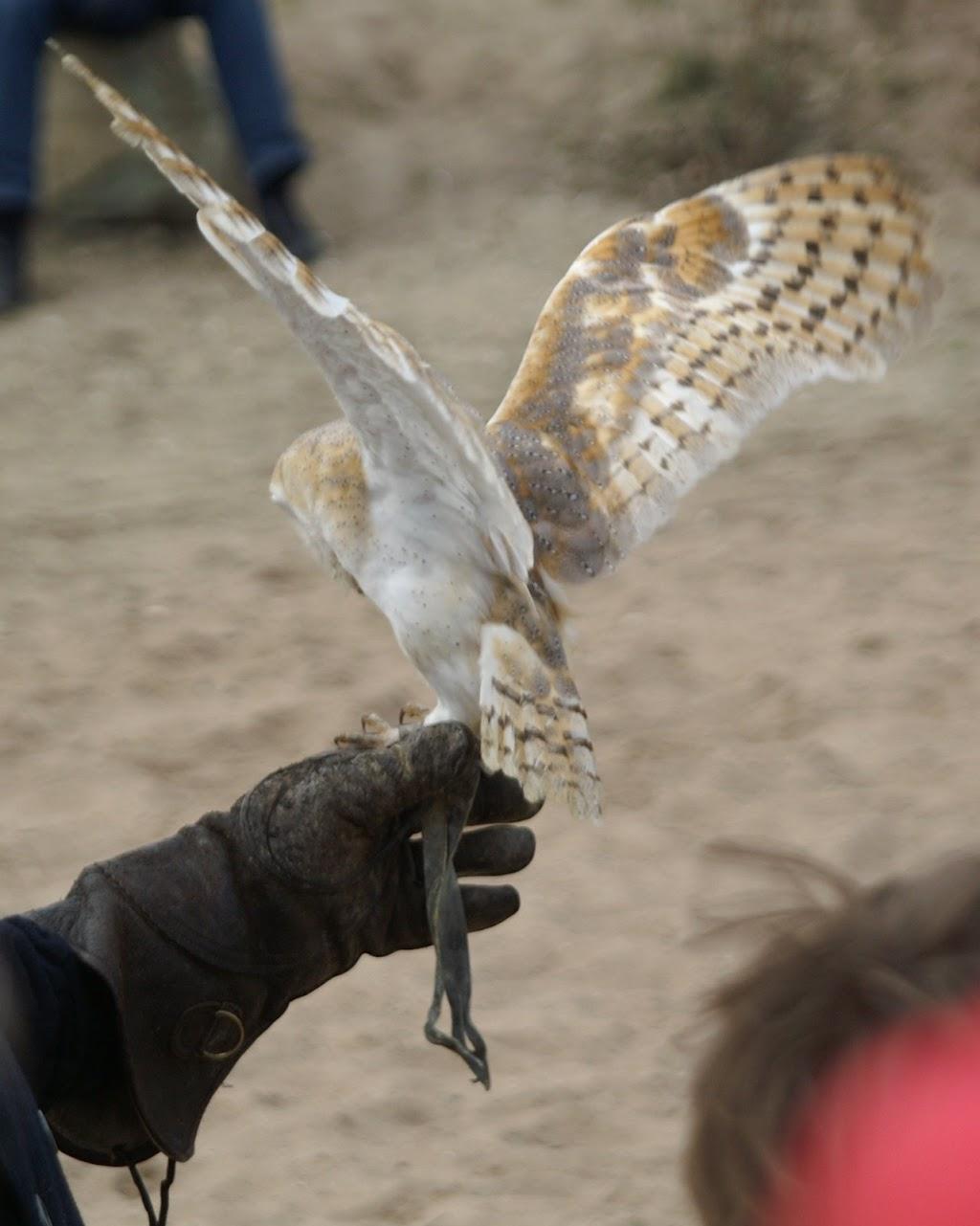Opening Speeltuin en Roofvogelshow 17 maart 2007 - Nr_150
