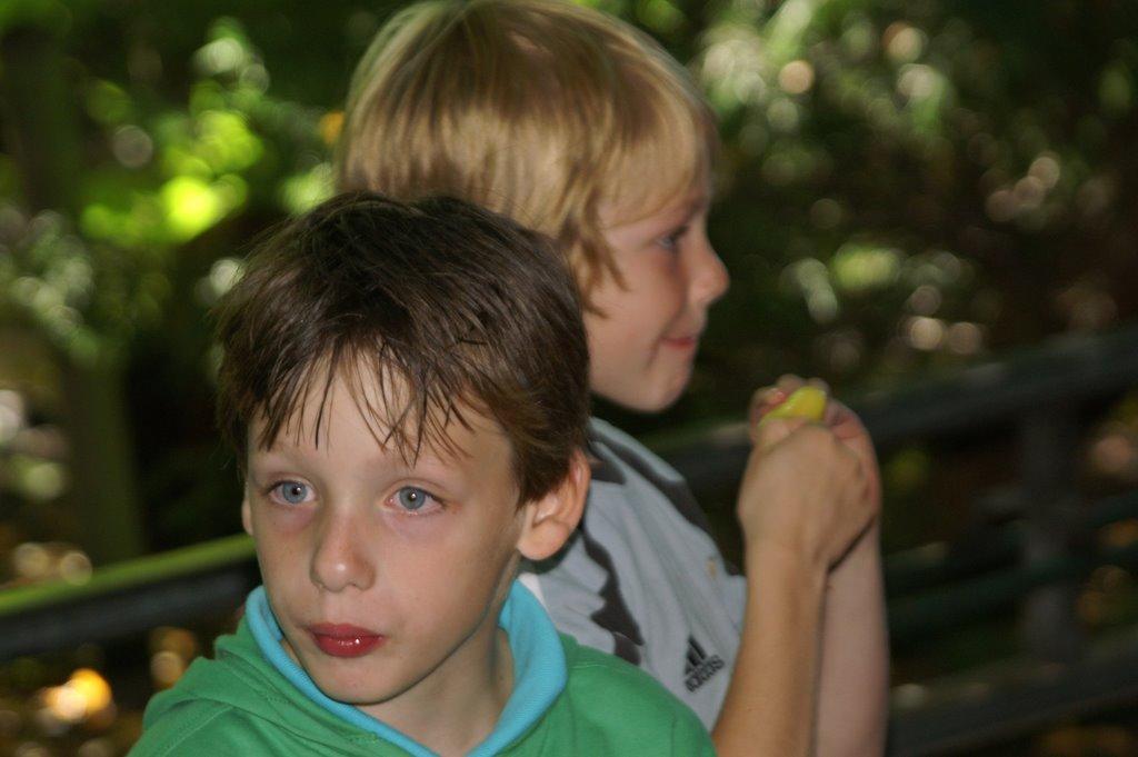 Drievliet 2006 - PICT1369