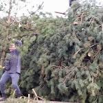 Paasvuur 2015 hout halen