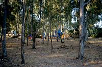 camp.verano 84 (4)