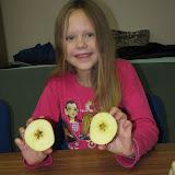 Krájení jablek (4)