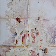 Glicine rosso bhoeme 35 x 50 cm su carta