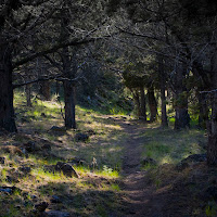 PageSprings_3__9