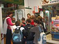 excursion-tarifa-2-1-gallery