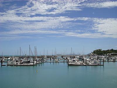 Abel Point Marina
