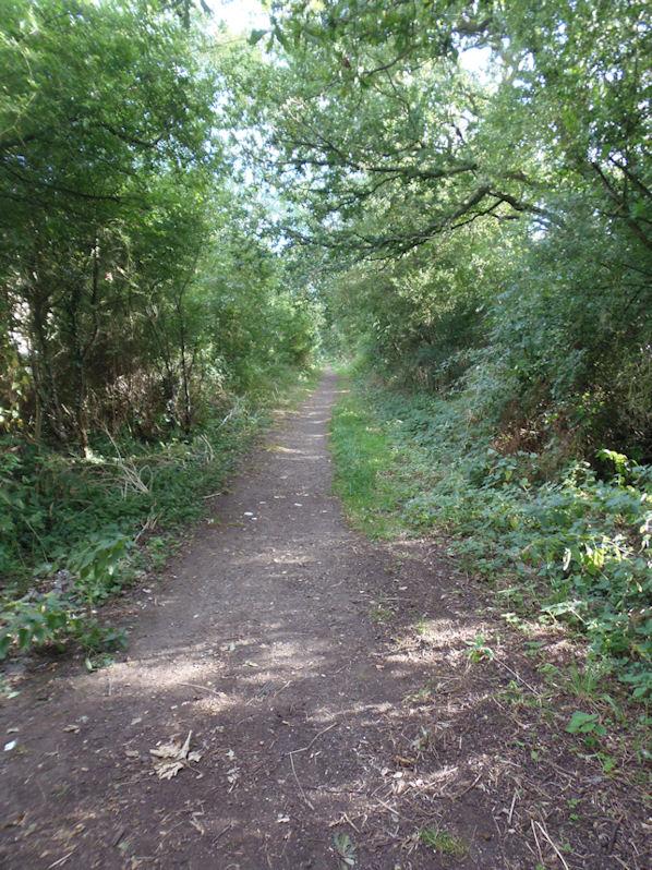 Near Kingsmead