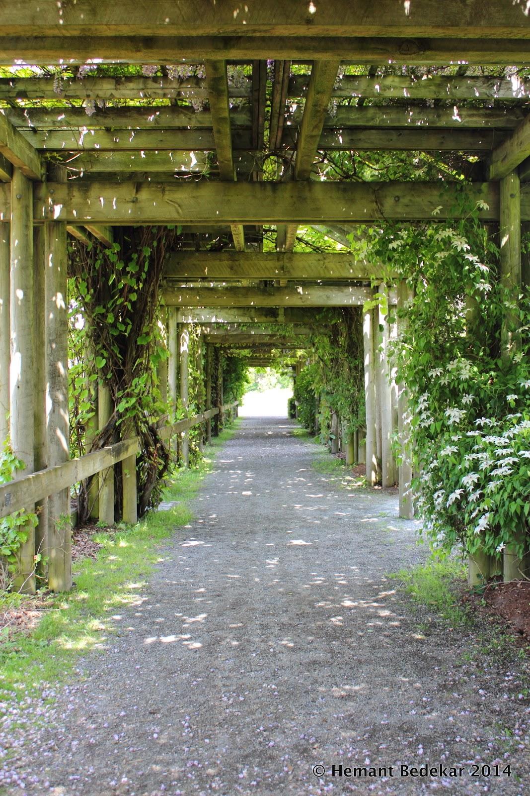 University of British Columbia - Botanical Garden